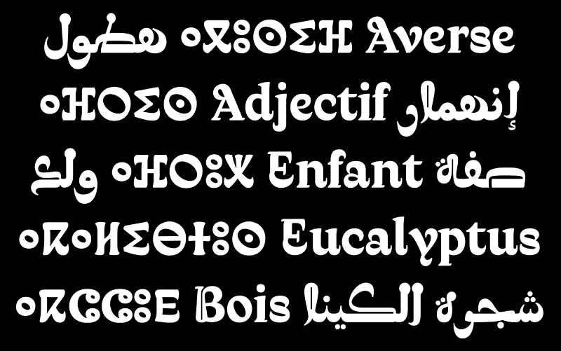 Qandus medium showing Latin Arabic and Tifinagh scripts